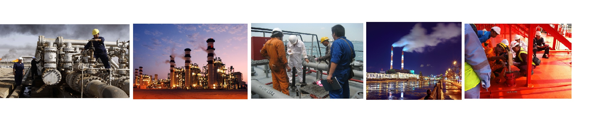 Inspection of Petrochemical products